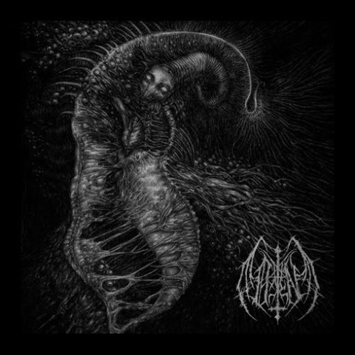 Ill Omen - divinity Through Uncreation