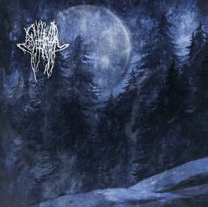 Severoth – Forestpaths